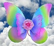 Flower Fairy Wings-Rainbow Rose